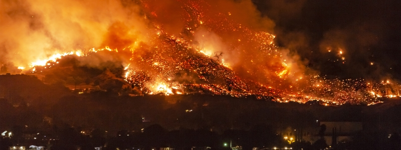 predict wildfires