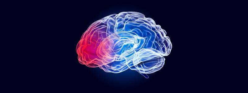 brain injury test
