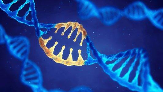 reversible gene editing