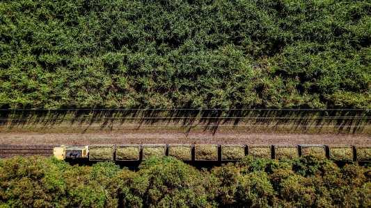 sustainable fertilizer