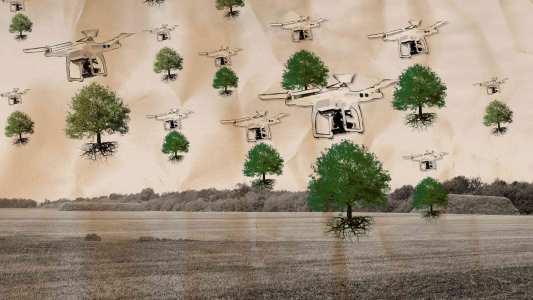tree-planting drones