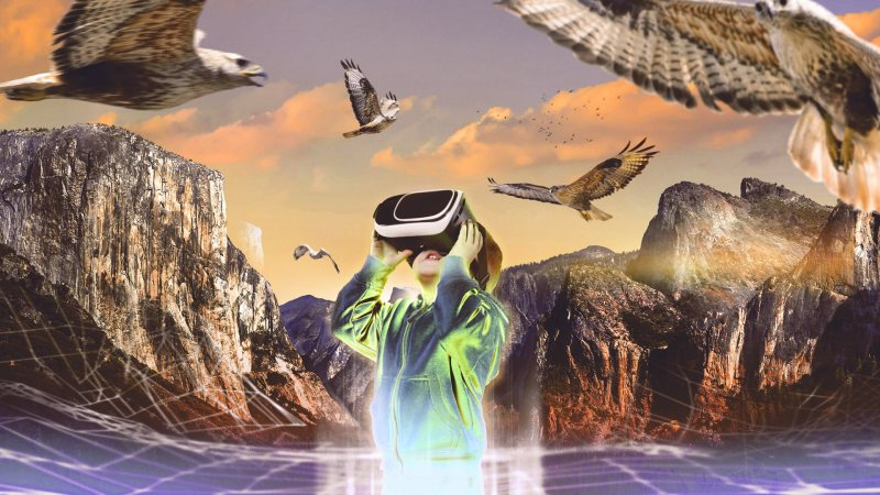 VR Nature