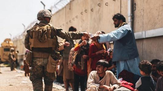 afghan allies