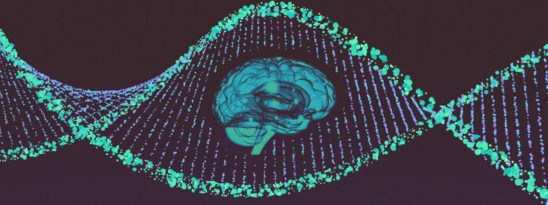 brain-wide gene editing